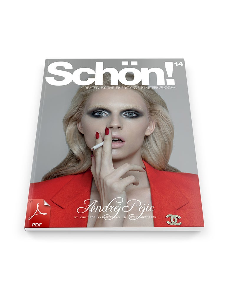 Image of Schön! 14 Andrej Pejic / eBook download