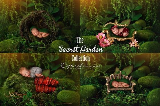 Image of The Secret Garden Collection- Newborn Digital Backdrop