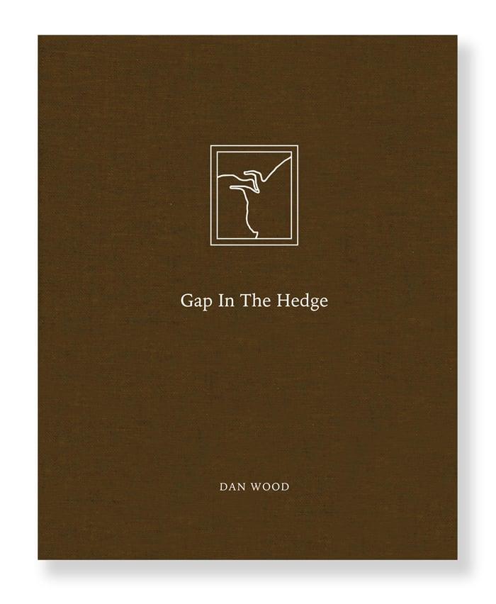 Image of Dan Wood - Gap In The Hedge