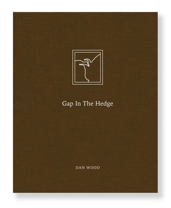 Image of Dan Wood - Gap In The Hedge