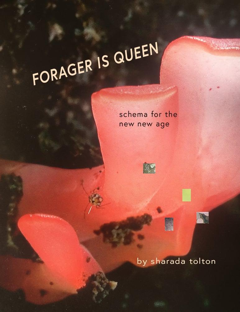 Image of Forager is Queen (MUFF ORIGIN ZINE)