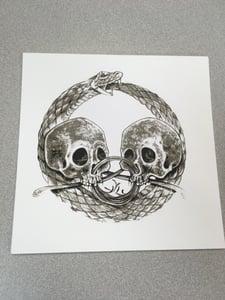 Image of Serpent & Skull