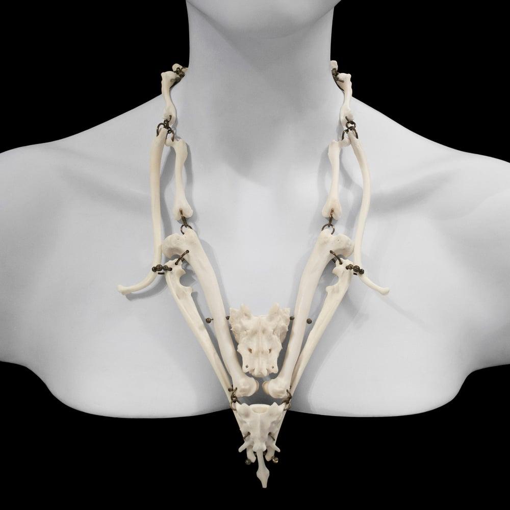 "Image of ""Nakia"" Red Fox & Raccoon Bone Necklace"