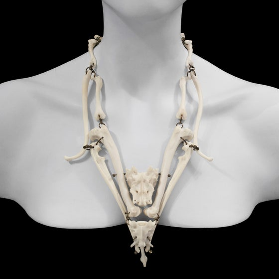 "Image of ""Nakia"" Red Fox & Raccoon Bone Necklace"