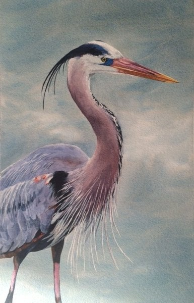 Image of Blue Heron giclee