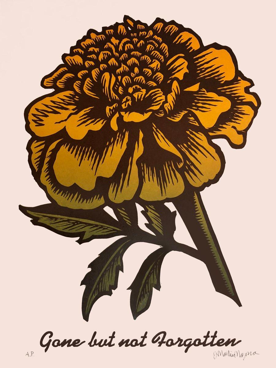 Image of Marigold