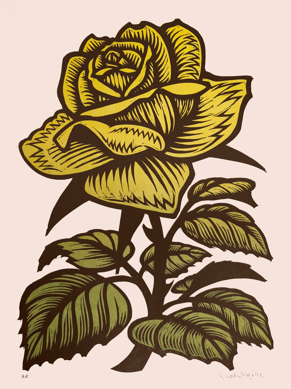 Image of Yellow Rose