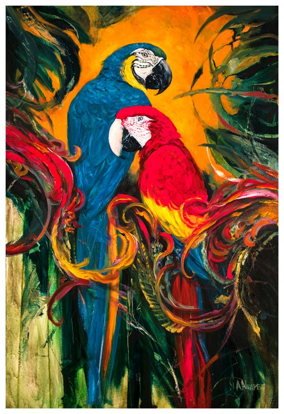 Image of Macaws (Print)