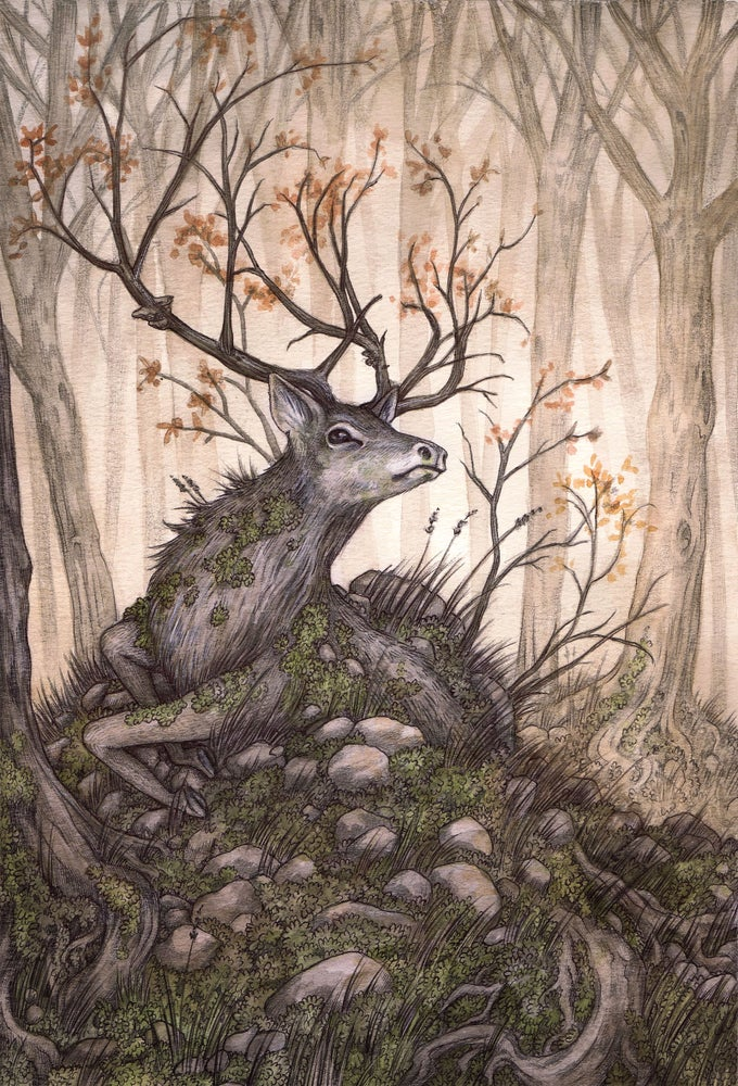 Image of 'The Hart of the Forest' by Adam Oehlers