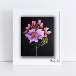 Image of Dark & Stormy Flora