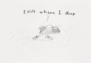 Image of I shit where I sleep
