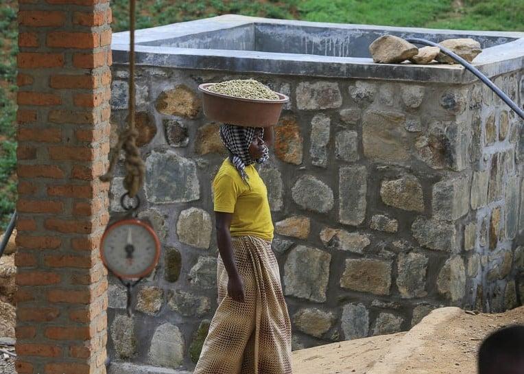 Image of Rwanda