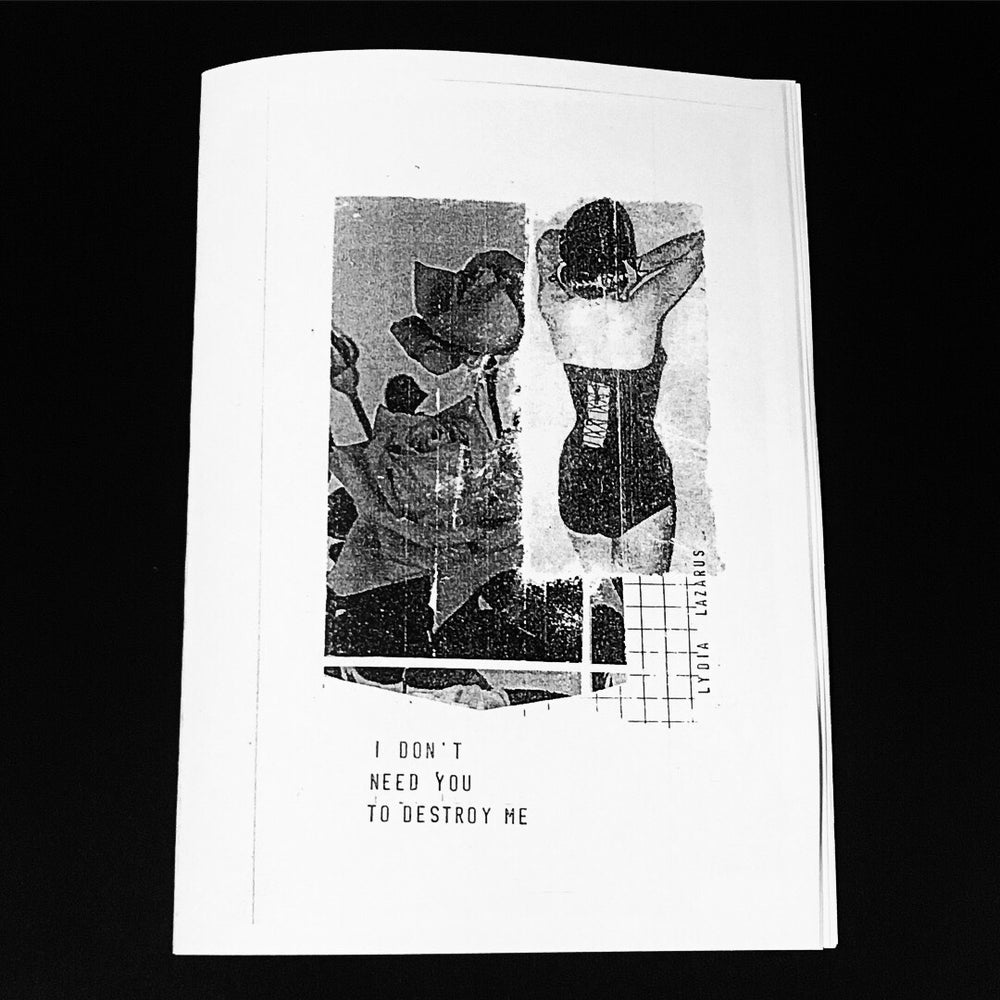 Image of I Don't Need You To Destroy Me - Issue 1