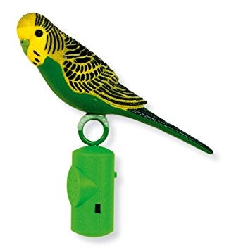 Image of PARROT 1