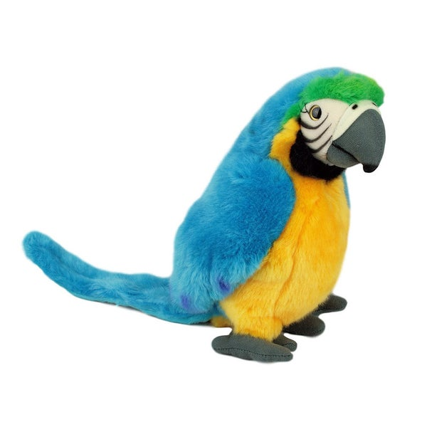 Image of PARROT 4