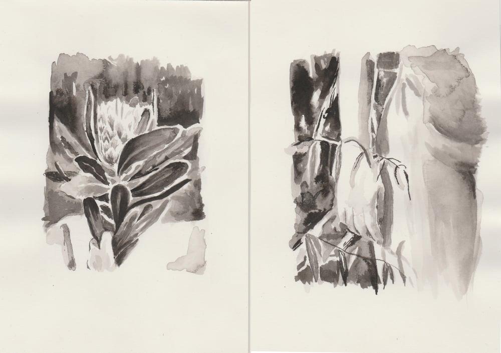 Image of 2 pack A5 Original Paintings