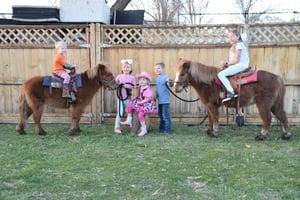 Image of BASIC Pony Party