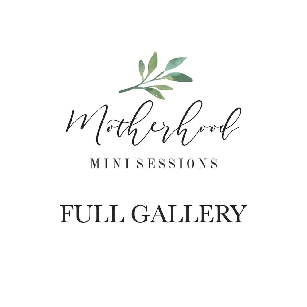 Image of MOTHERHOOD MINI SESSIONS - FULL GALLERY