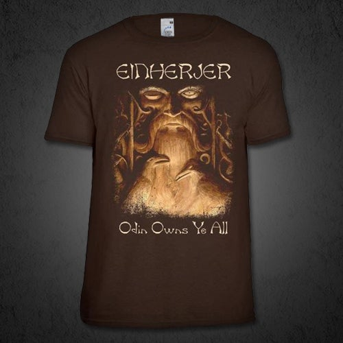 Image of ODIN OWNS YE ALL - TEE