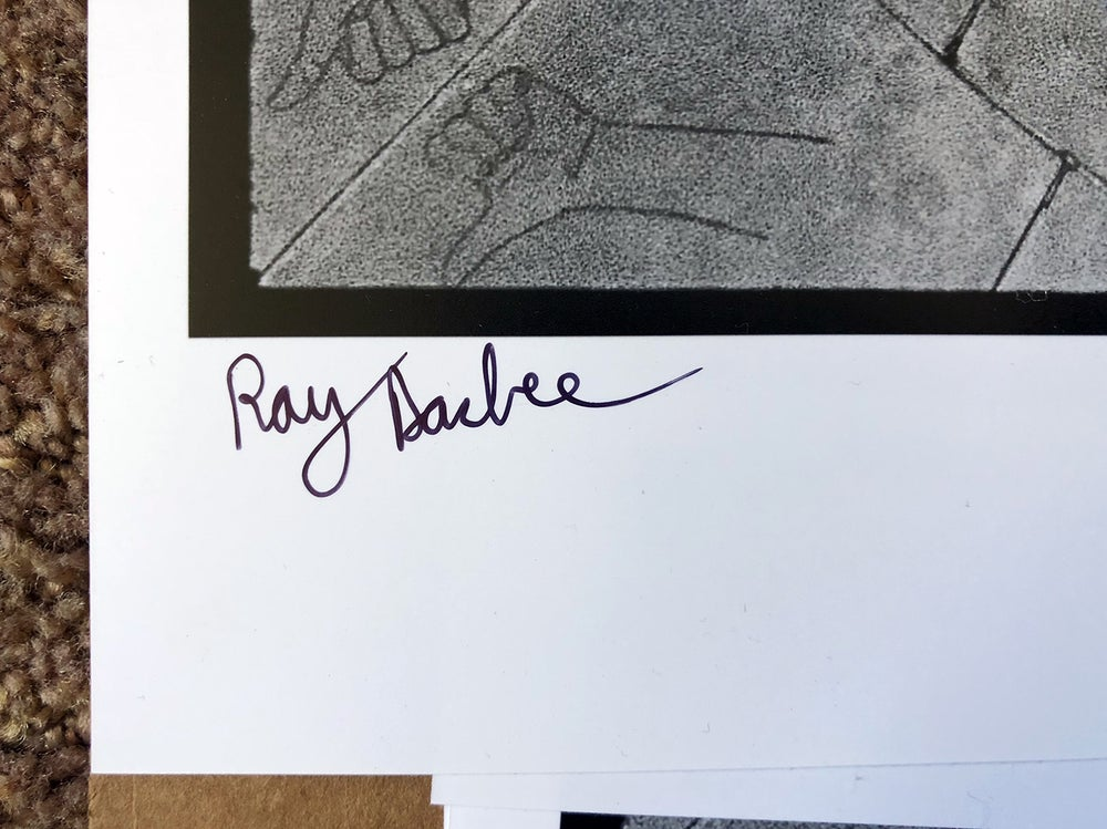 Image of Ray Barbee Backside 360, Los Angeles, Ca 2013 (SIGNED)