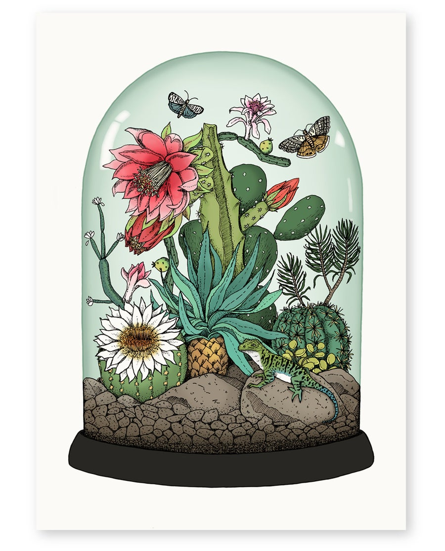 Image of 'Cactus Dome' Limited Edition Art Print
