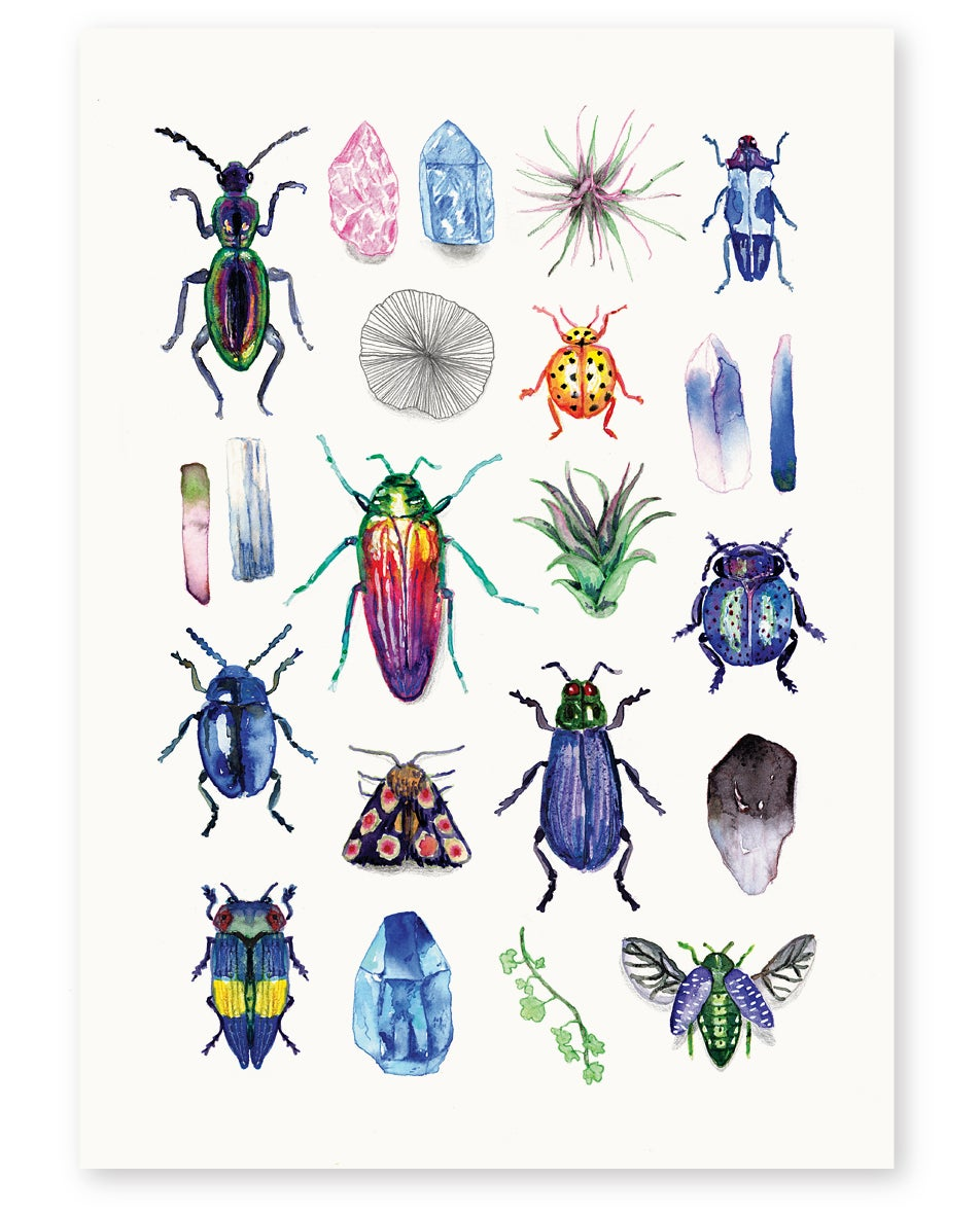 Image of 'Beetles' Limited Edition Art Print