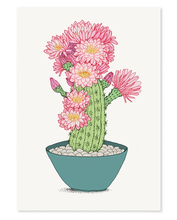 Image of 'Pink Cactus' Limited Edition Art Print
