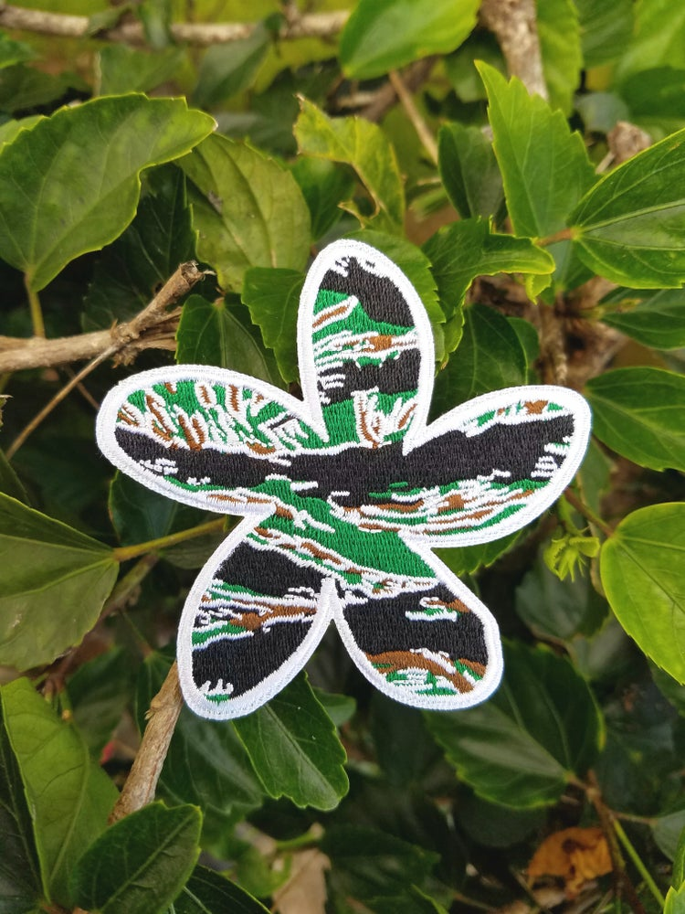 Image of New!!! Tiger Camo Plumeria