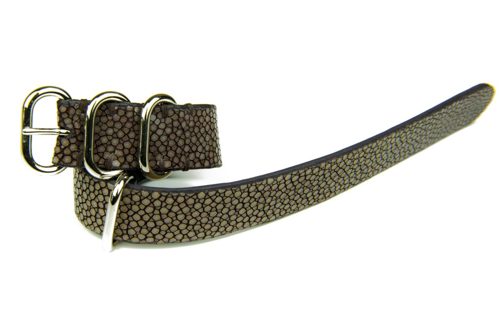 Image of Brown stingray NATO strap