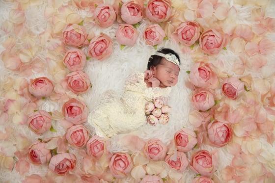 Image of Newborn Session