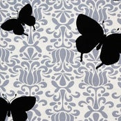 Image of Butterfly Licorice Organic Cotton