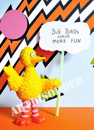 Image of Big Birds Have More Fun