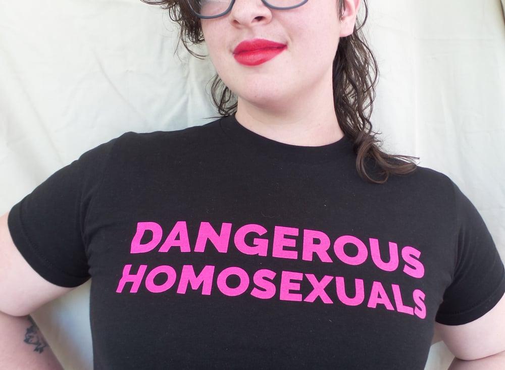 Image of Dangerous Homosexuals