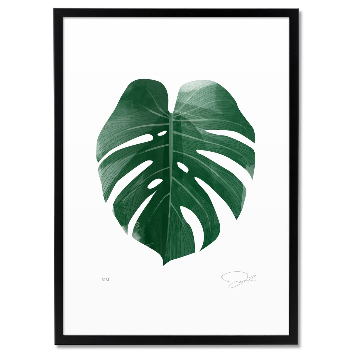 Image of Print: Monstera Deliciosa