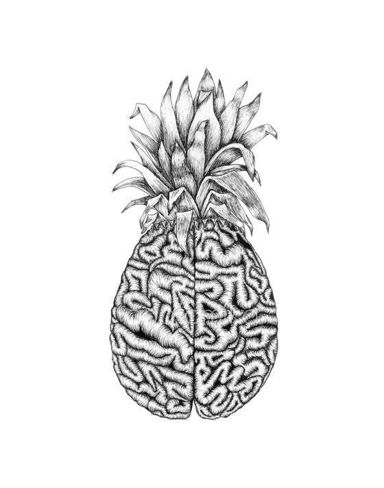 Image of Sweet Cerebrum
