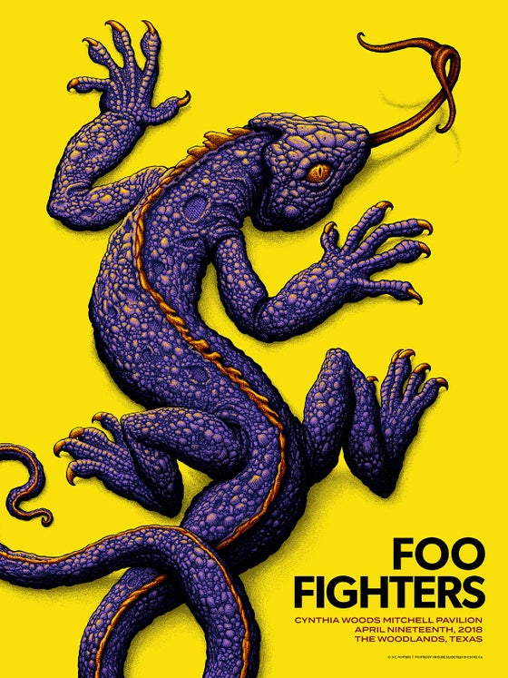 Image of Foo Fighters Gig Poster: Woodlands