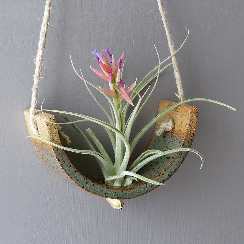 Image Of Small Hanging Air Plant Cradle Gunmetal Green Planter Vase