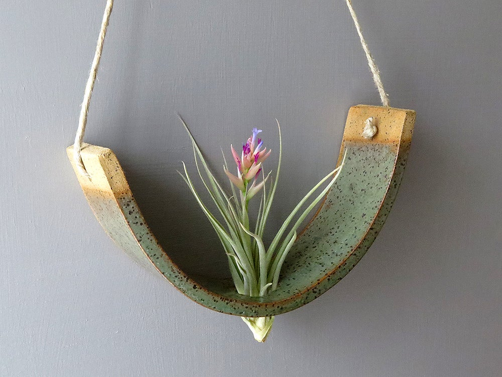 Image of Hanging Air Plant Cradle - Gunmetal Green Planter Vase