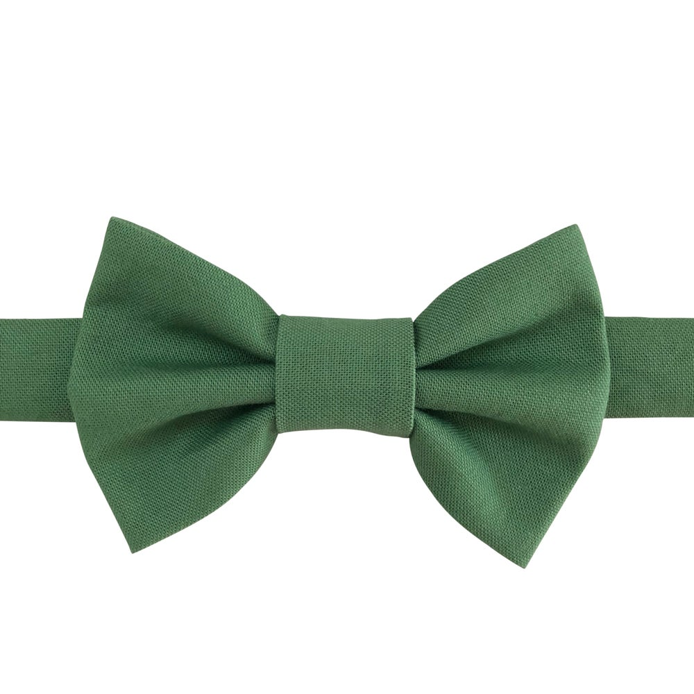 Image of palm bow tie