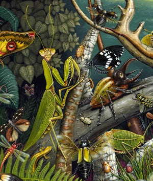 Image of MANTIS MUNDI, The Mantis's World - LIMITED EDITION PRINT