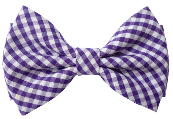 Image of Purple gingham pre-tied bow tie