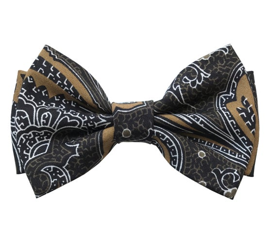 Image of Brown paisley pre-tied bow tie