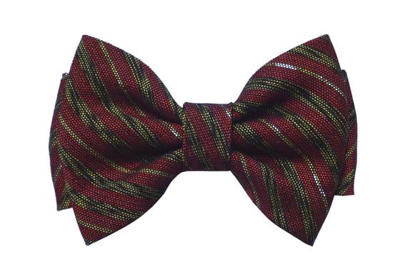 Image of Burgundy stripes pre-tied bow tie