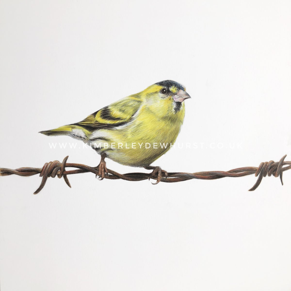 Image of 'Siskin' Limited Edition Print