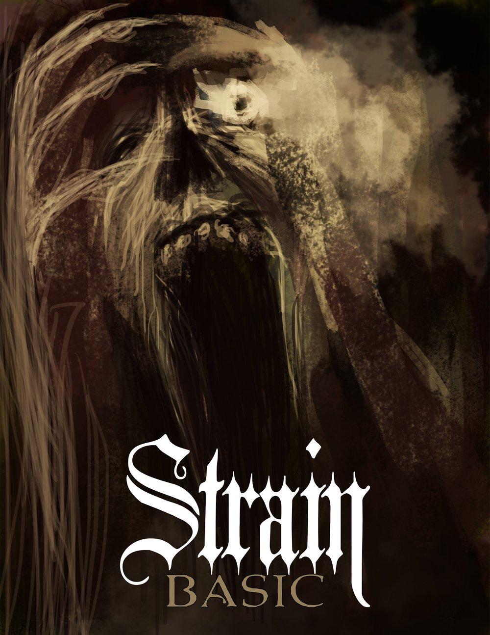 Image of Strain Basic (PDF)