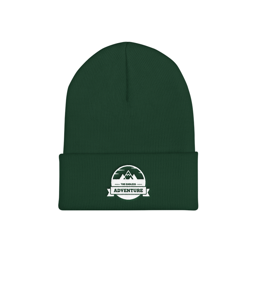 Image of TEA Beanie! - Spruce