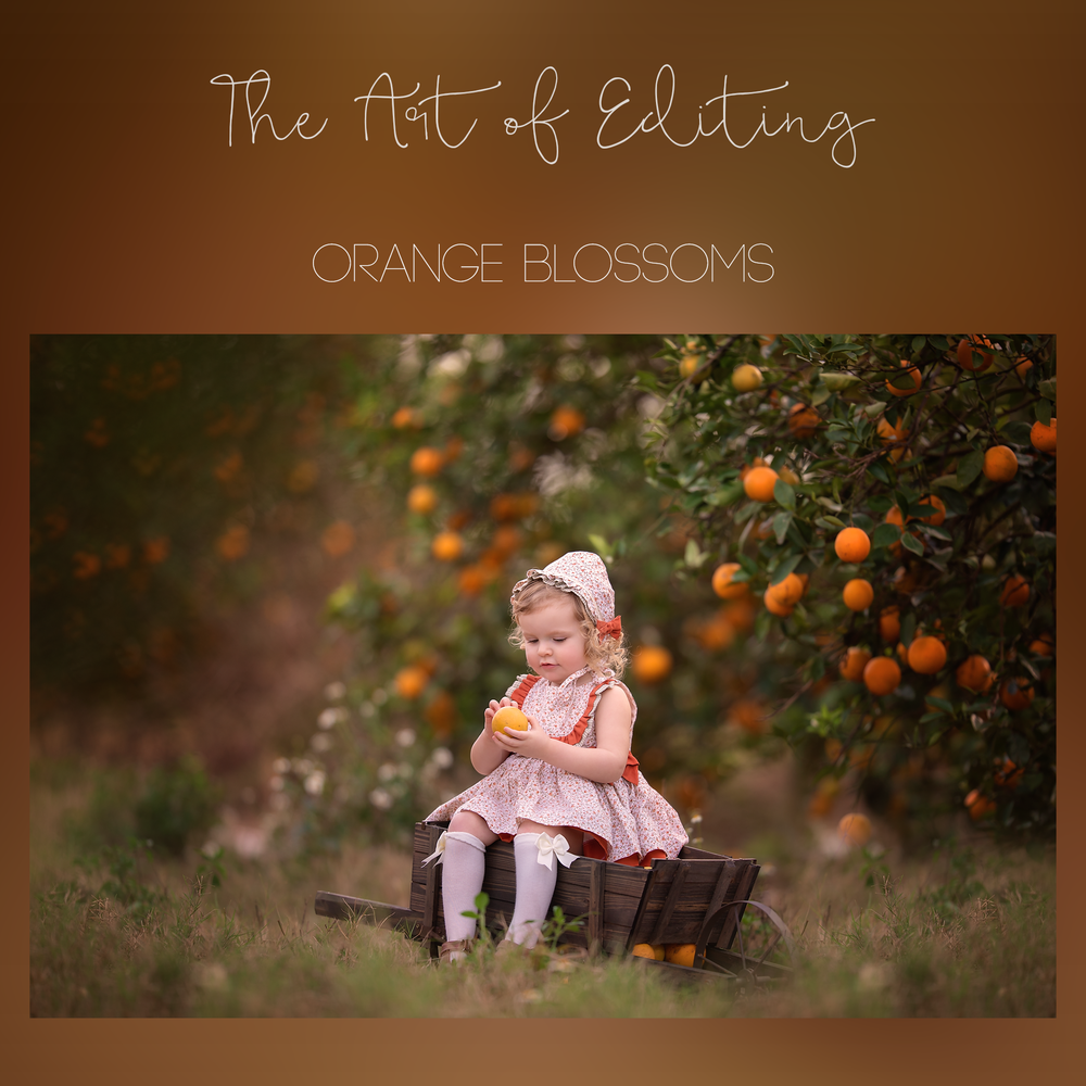 Image of The Art of Editing - Orange Blossoms
