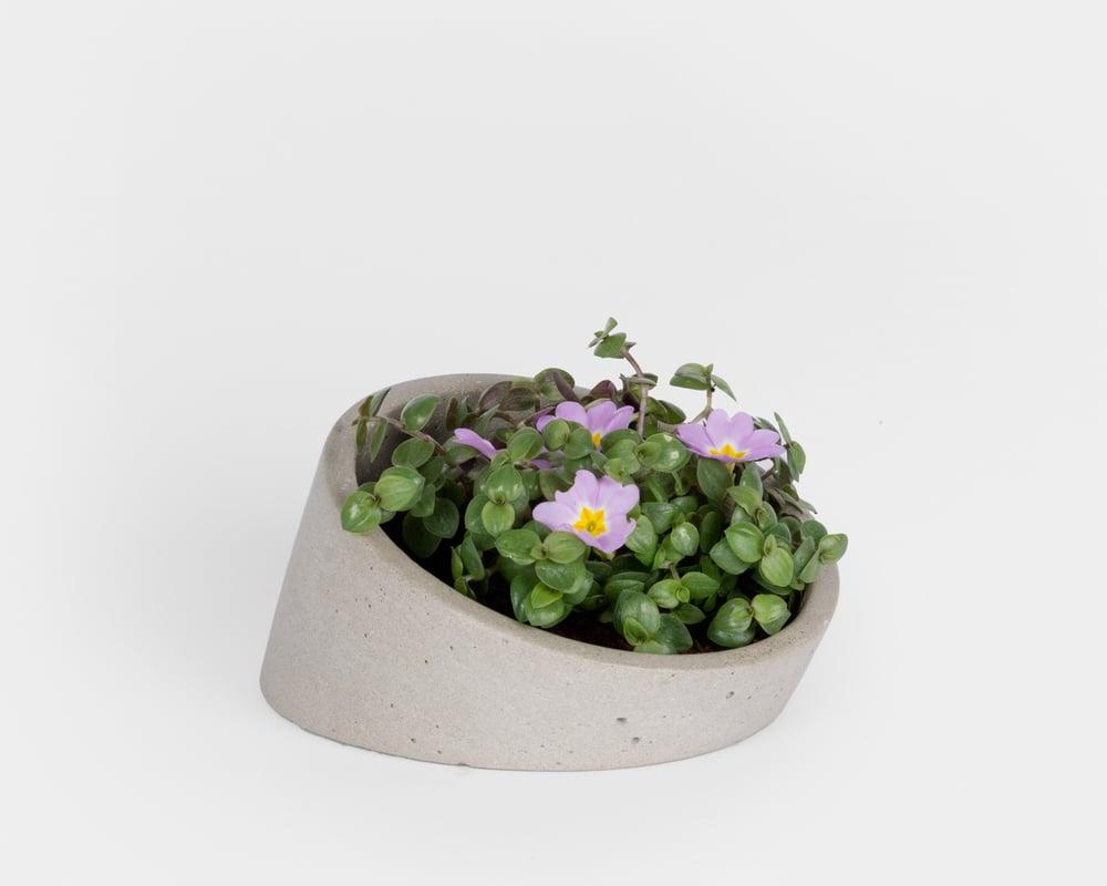 Image of Pot - Planteur M4