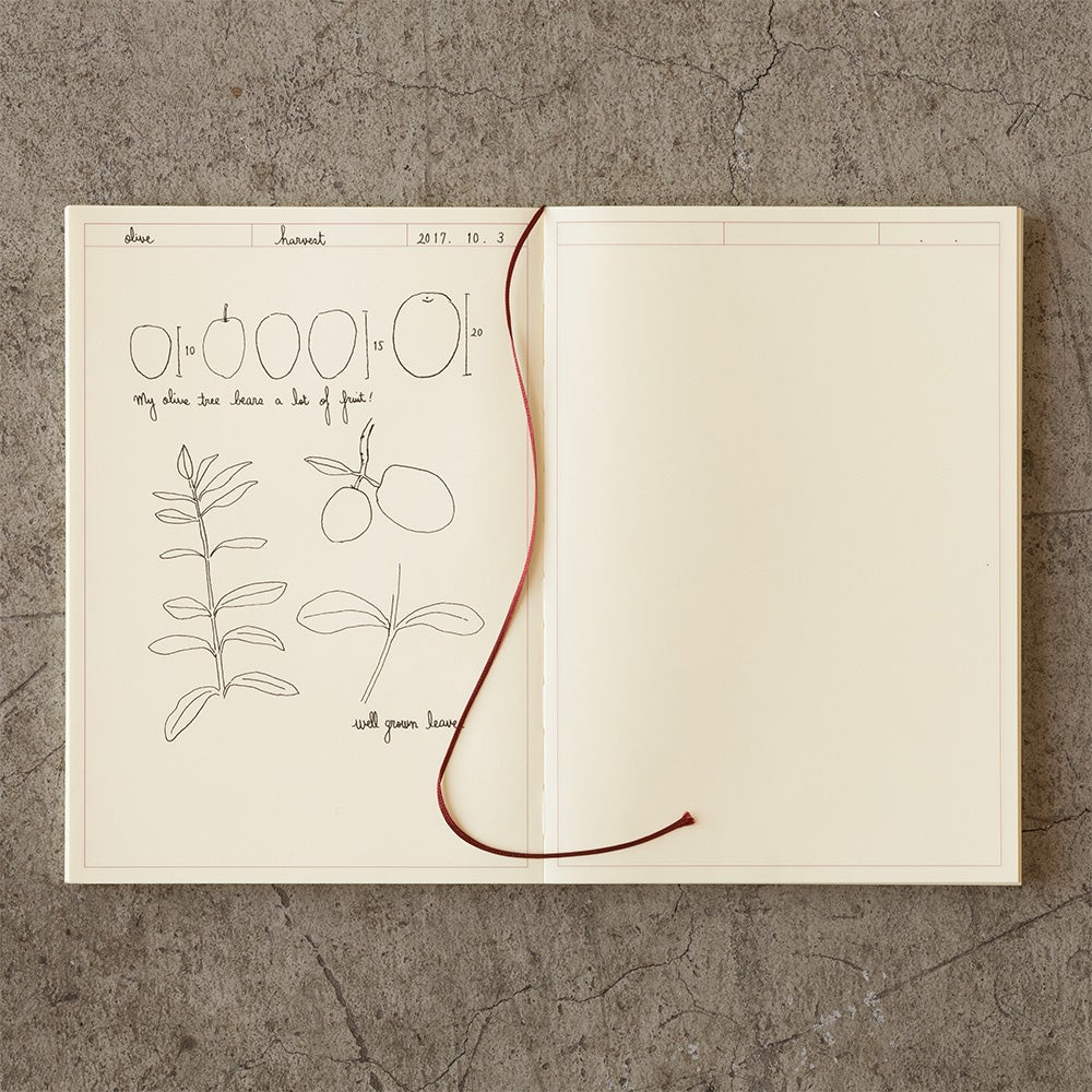 Image of MD Paper 10th Anniversary Limited Edition A5 Sketch Journal