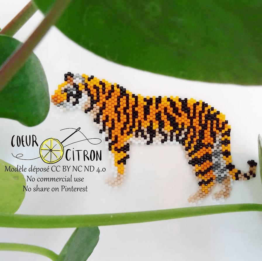 Image of Diagramme du tigre du Bengale